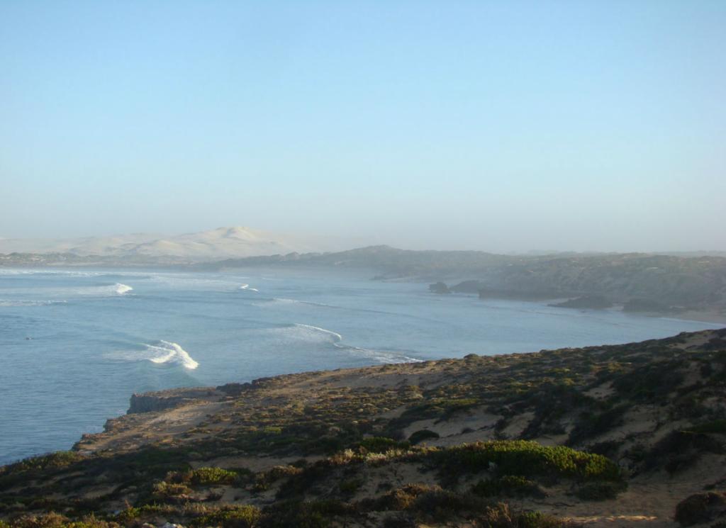 Cactus Beach 2