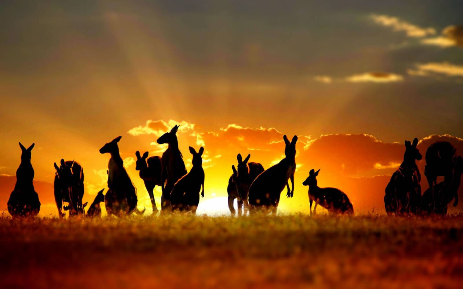 5 Travel Resolutions for Aussie Backpackers in 2016
