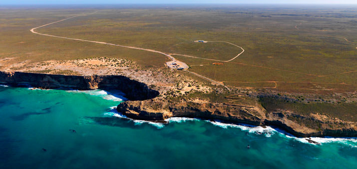Idiot's Guide To Whale Season On The Nullarbor