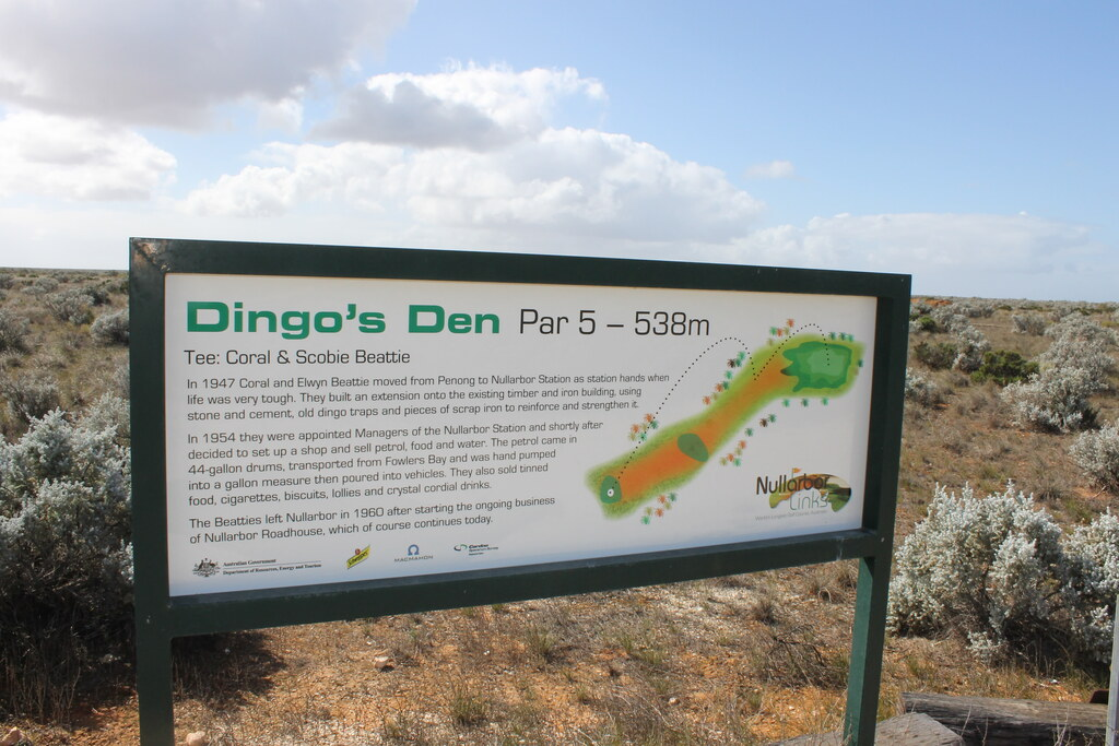 Dingos den sign