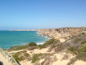 whale cliffs
