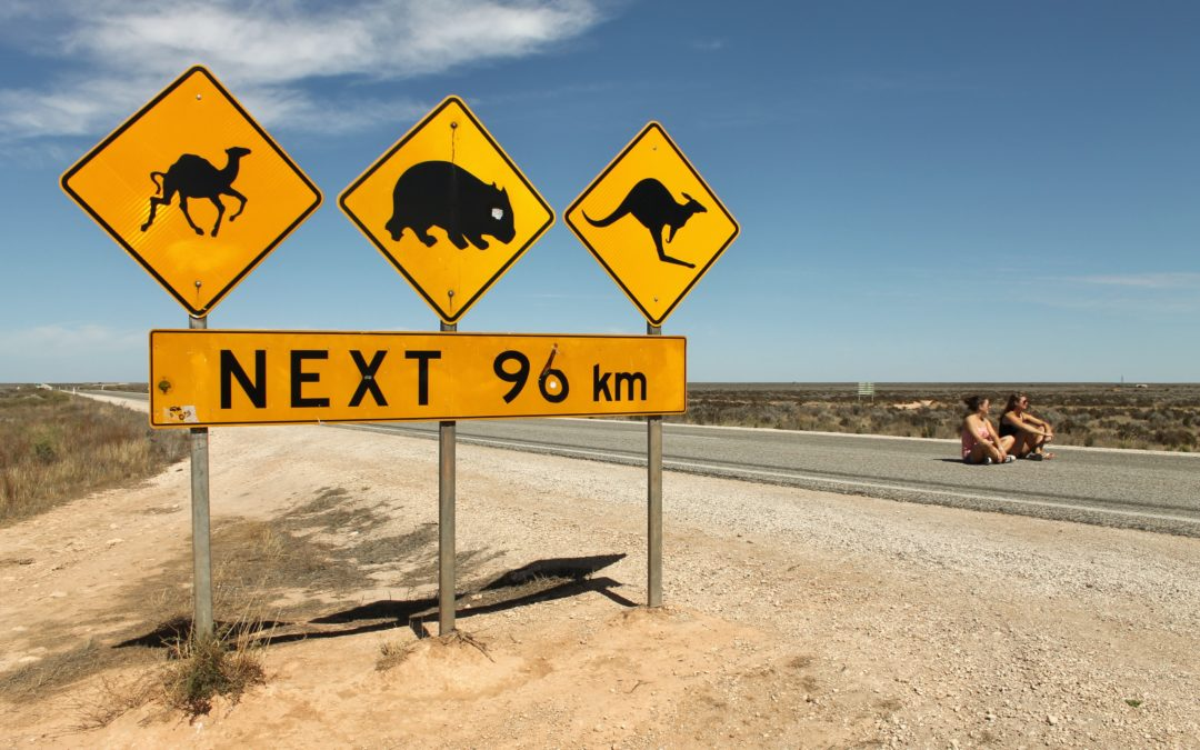The Roadtrains in Eyre — Dancing with the Kings of the Road